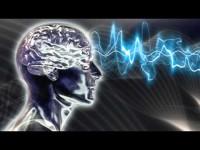 Fisiologia della percezione musicale (parte 1)